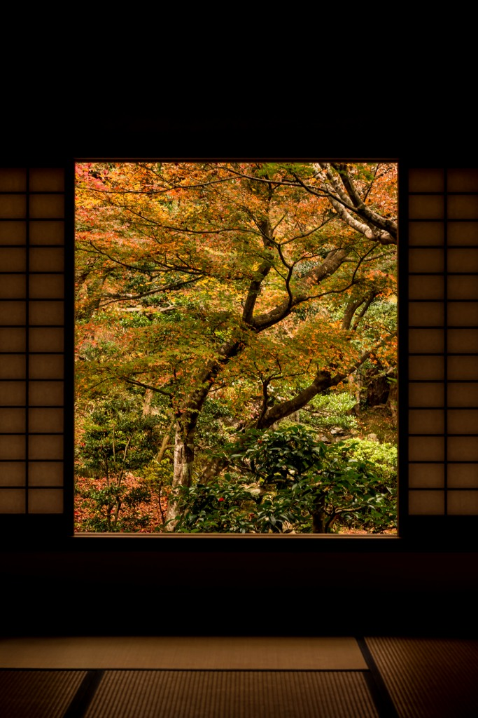 2015.11.17徳源院の紅葉6