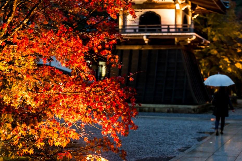 2015.11.18永源寺14
