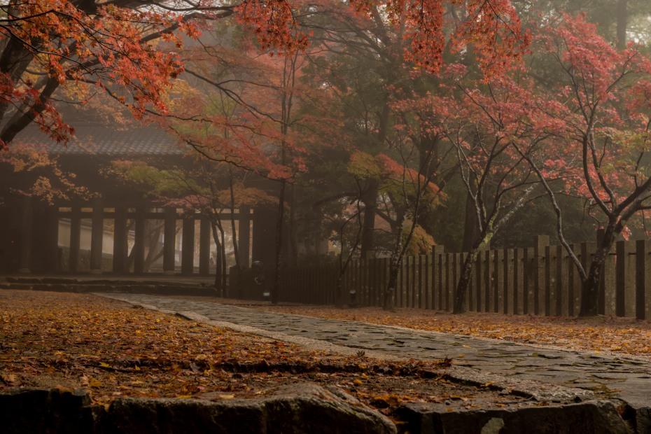 2015.11.18永源寺3