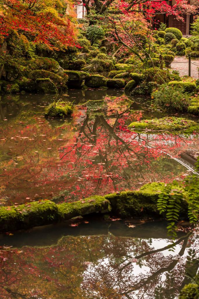 2015.11.19金剛輪寺の庭園13
