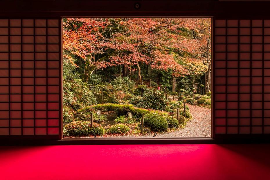 2015.11.19金剛輪寺の庭園5
