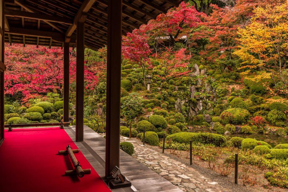 2015.11.19金剛輪寺の庭園4