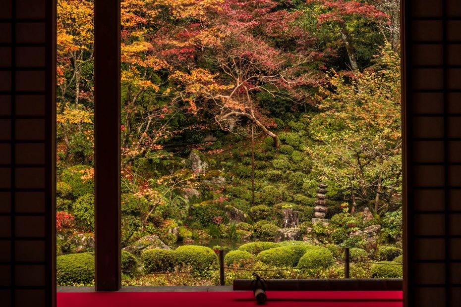 2015.11.19金剛輪寺の庭園2