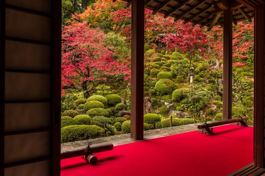 2015.11.19金剛輪寺の庭園3