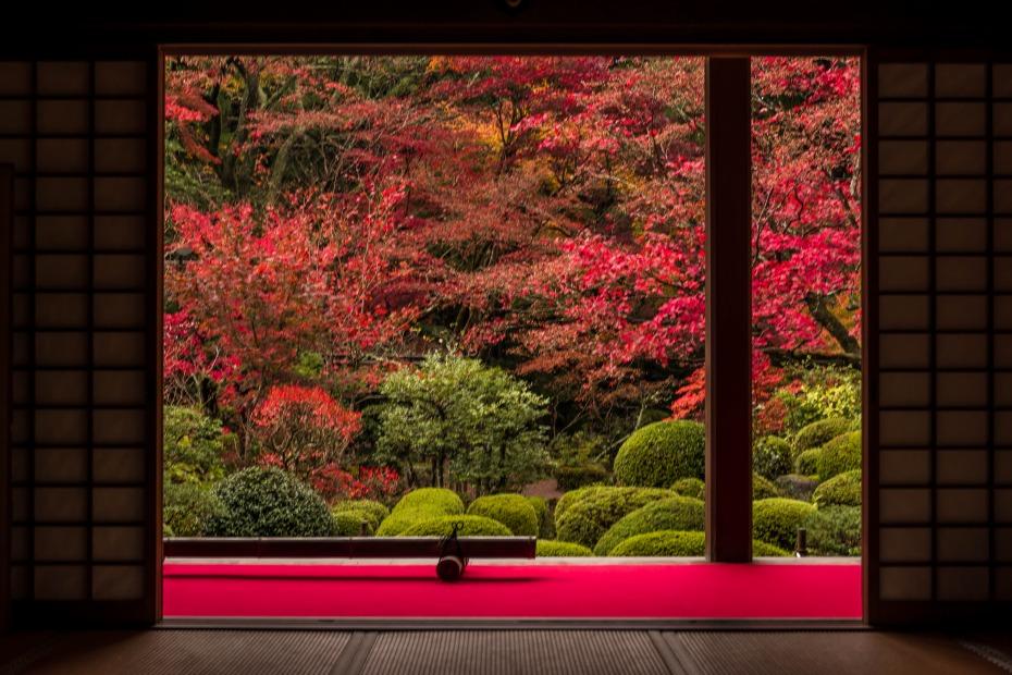 2015.11.19金剛輪寺の庭園1