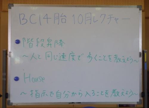 IMGP7537th_3.jpg