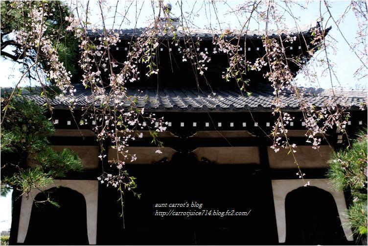 20160331hongakuji001.jpg