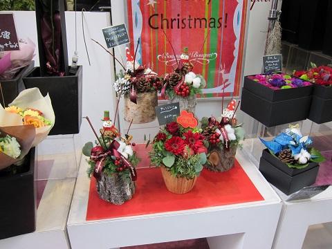花クリスマス