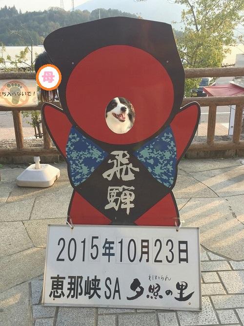 s-_20151023_185721.jpg