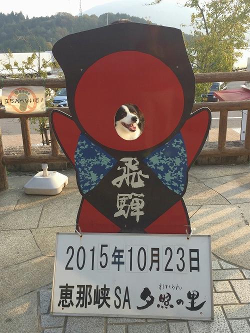 s-_20151025_092626.jpg