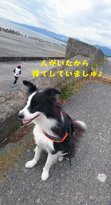 s-_20151111_154135.jpg