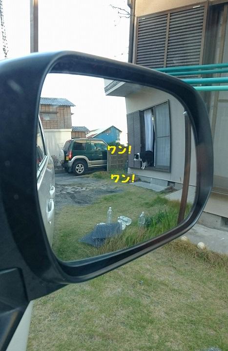 s-_20151204_193732.jpg
