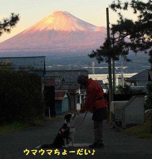s-_20151205_225859.jpg