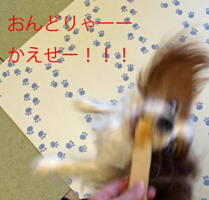 20151204 20151123 (32)