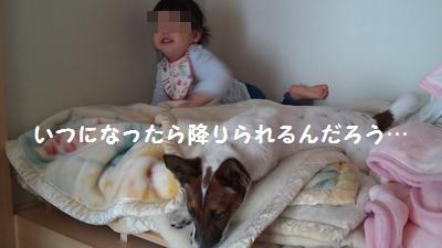 20150221押入れ②