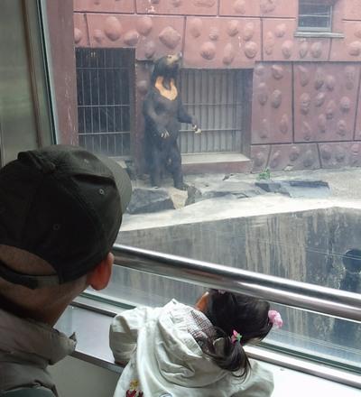 20151113動物園③