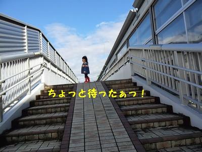20151115歩道橋①