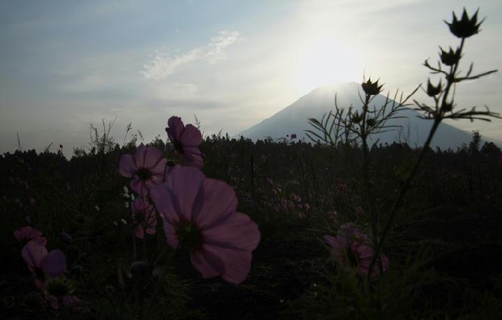 富士山の日の出-193