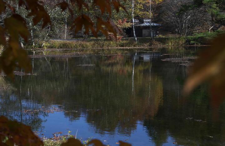 白駒湖-457