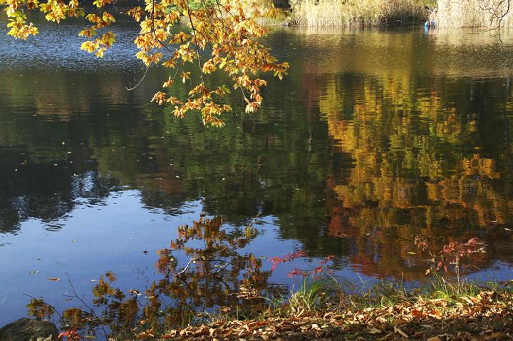 松原湖-483