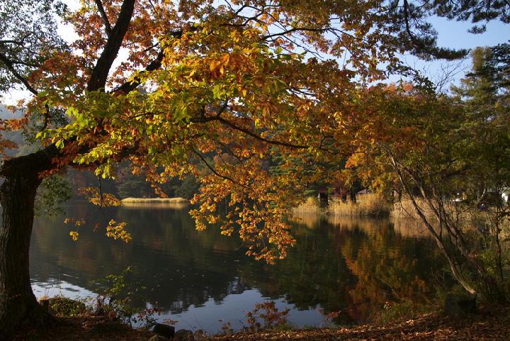 松原湖-496