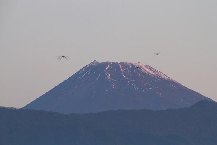 11月16日 6-16 今朝の富士山