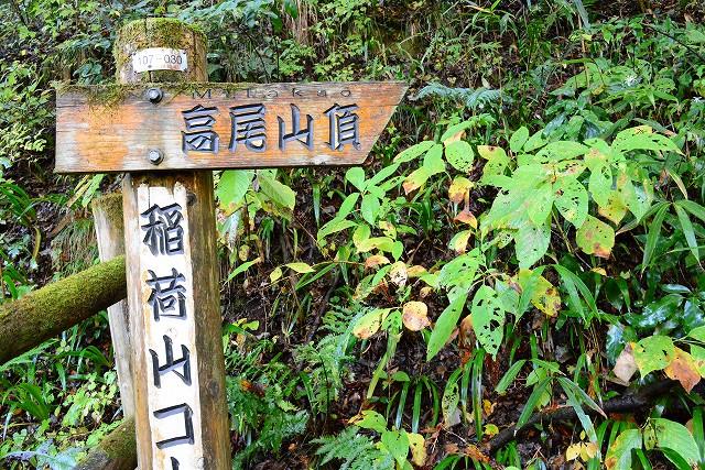 shukushouDSC_9222-2.jpg
