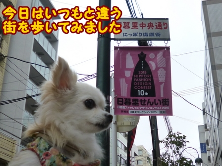 blog6946a.jpg