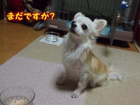 blog6957a.jpg