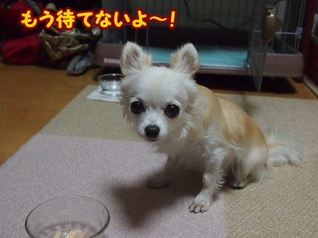 blog6959a.jpg