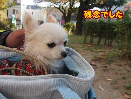 blog6969a.jpg