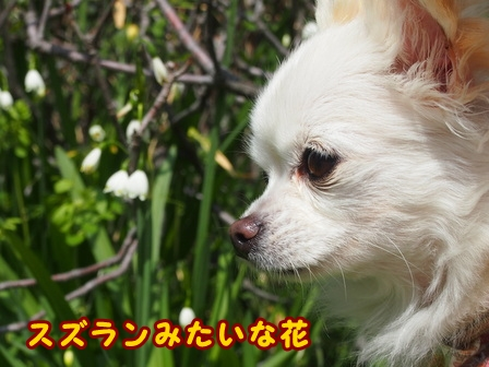 blog7362a.jpg