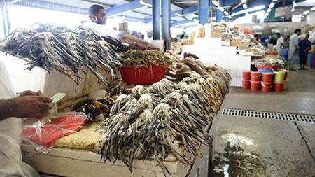 ドバイ2魚市場3