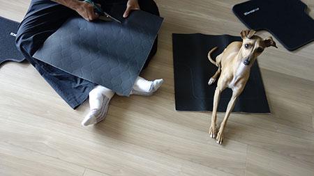 床マット2