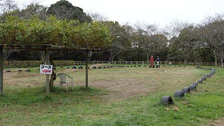 成田ゆめ牧場8