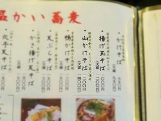 16-4-3 品山あぷ
