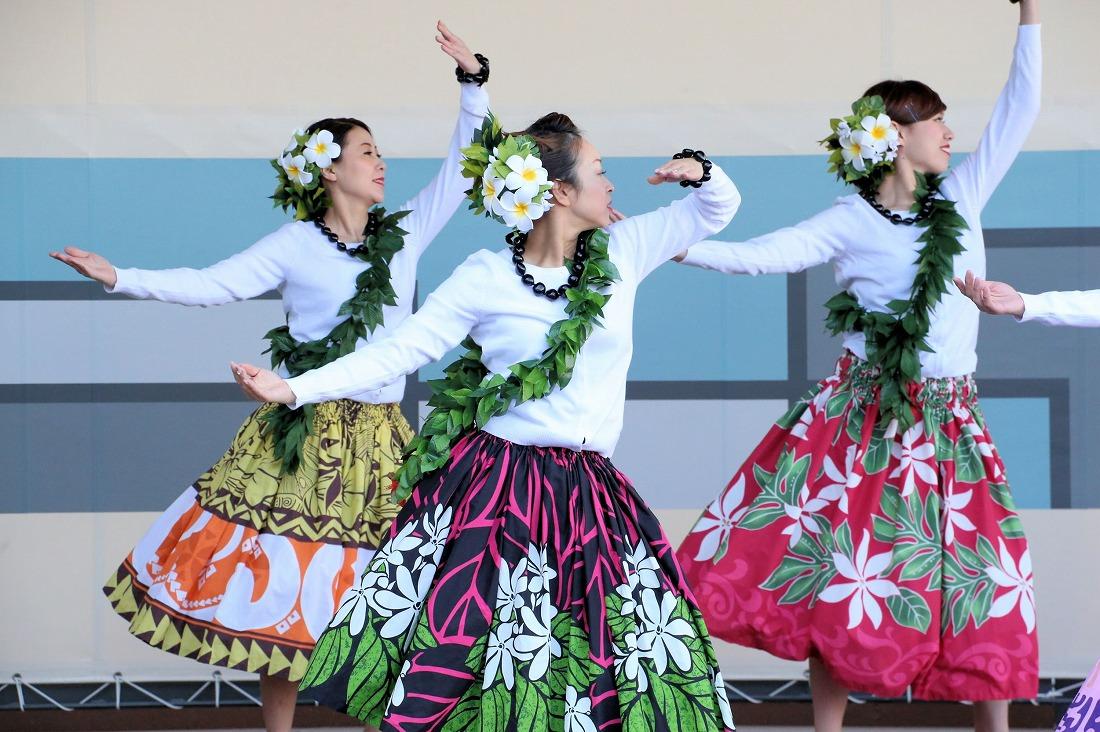 hawaiian 7