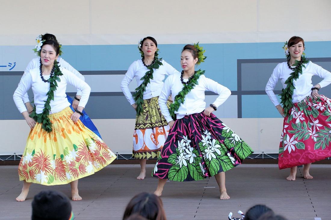 hawaiian 19