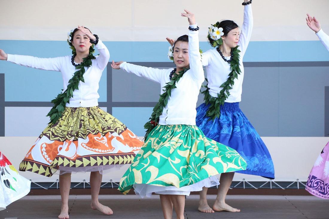 hawaiian 31