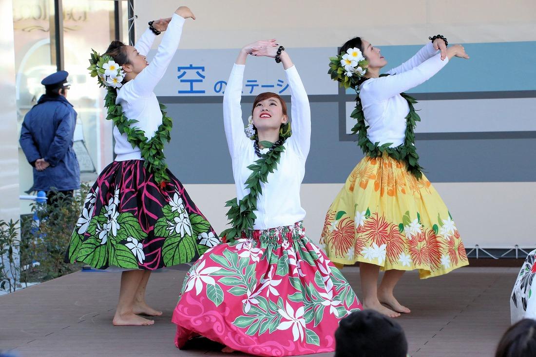 hawaiian 34