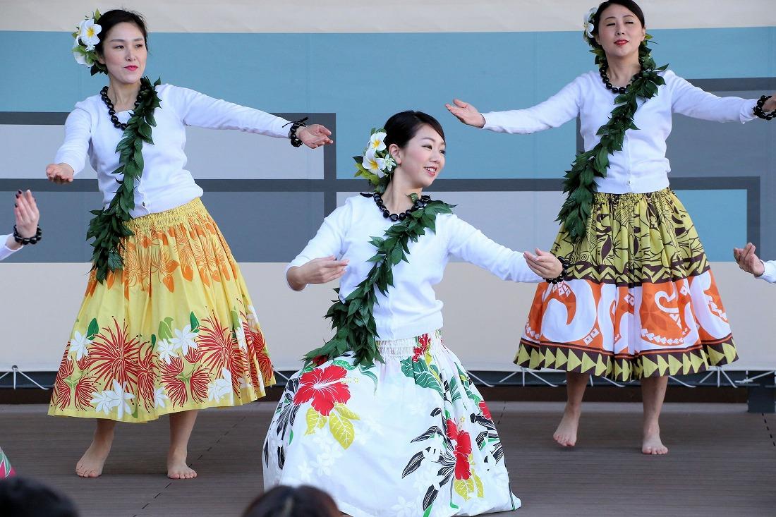 hawaiian 35