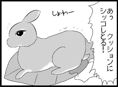 a71.jpg