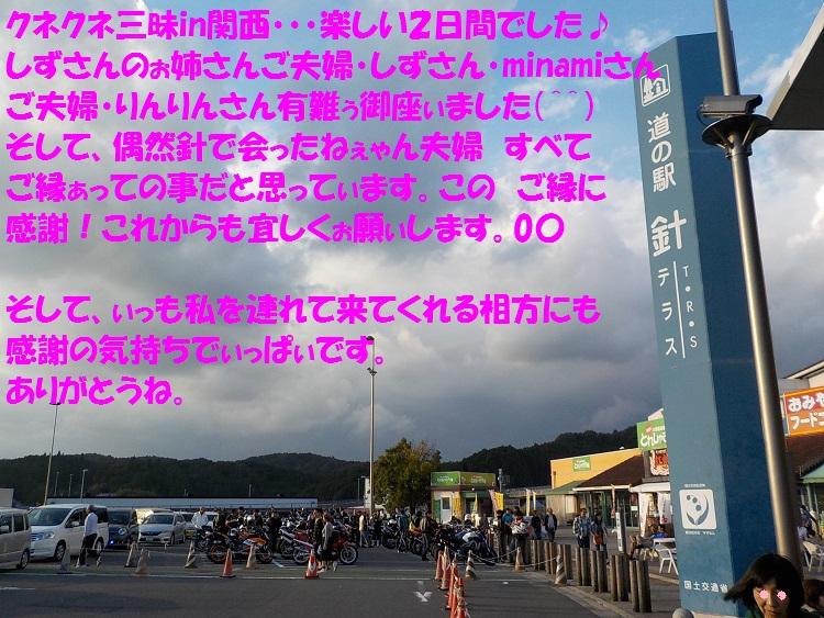 DSCN0960a.jpg