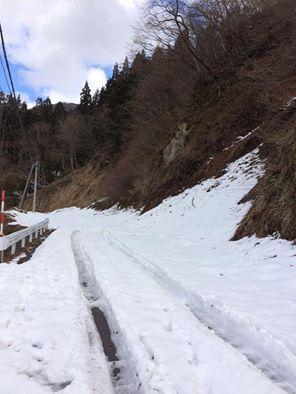 大長谷の雪
