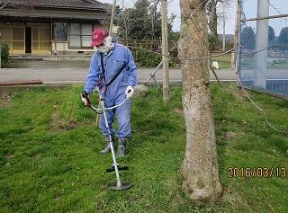リンゴ園草刈