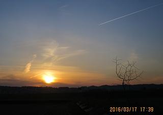 夕陽と飛行雲