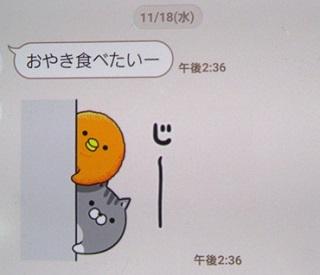 20151118 (6)