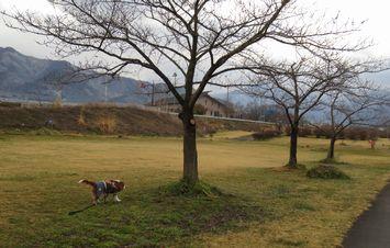 008緑地公園