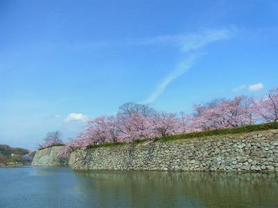 syukusyo-RIMG0805.jpg