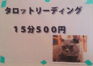 1447735009513.jpg